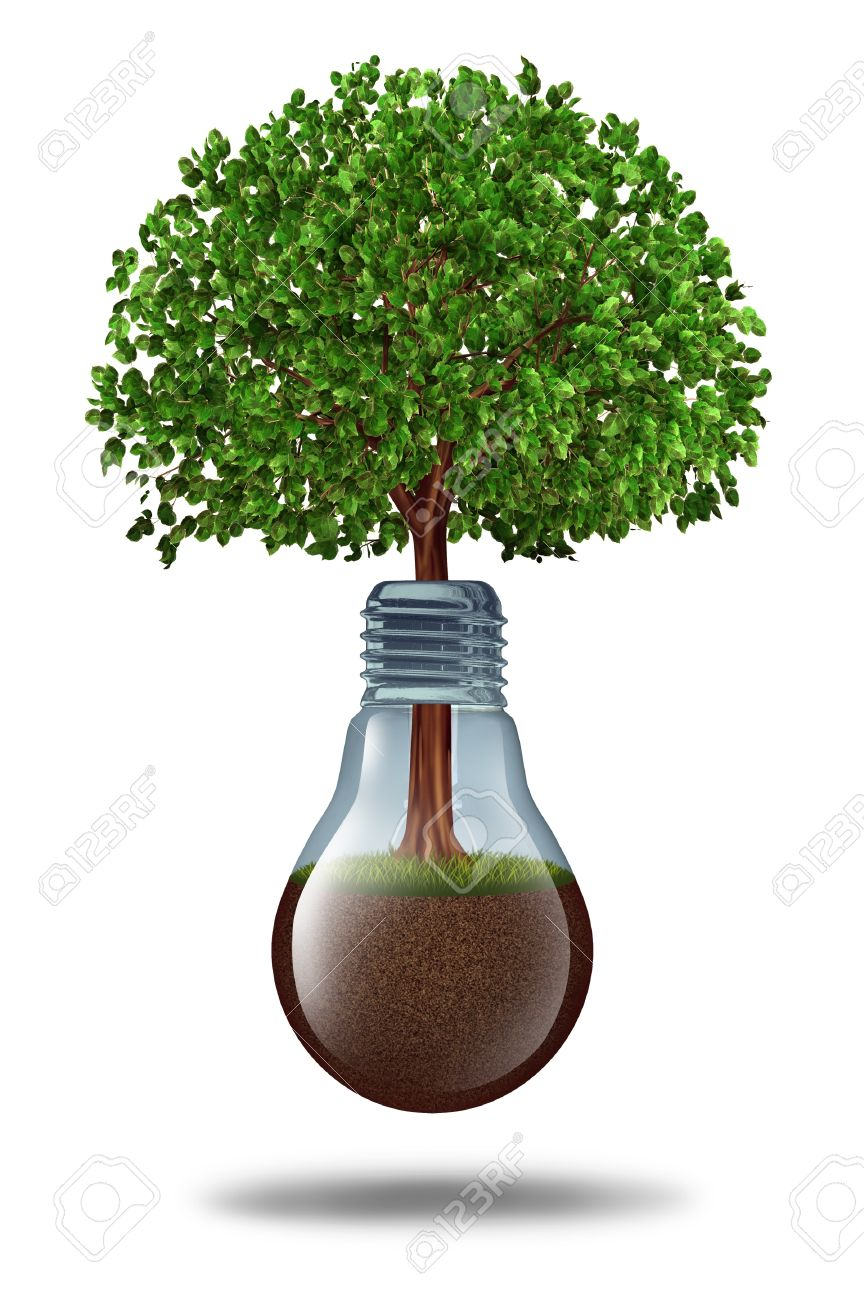 13983374-Business-development-and-financial-growth-with-a-tree-growing-out-of-a-lightbulb-with-fertile-earth--Stock-Photo